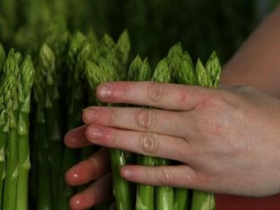 Аспержи ще хранят 200 безработни от Северозапада