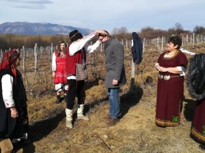 Богът на виното възхвали Врачанския Мискет