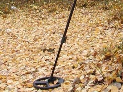 Спипаха иманяри с металотърсач и монети